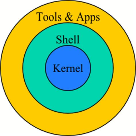 Basic shell commands for unix in essay